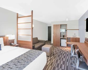 Microtel Inn & Suites by Wyndham Binghamton - Binghamton - Slaapkamer