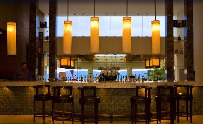 加爾薩布蘭卡自然保護區溫泉度假酒店 - 巴亞爾塔港酒店 - 巴亞爾塔港 - 酒吧