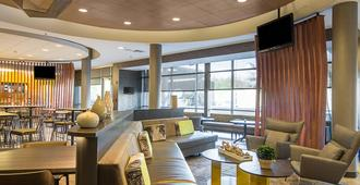 SpringHill Suites by Marriott Tampa North/I-75 Tampa Palms - טמפה - טרקלין