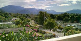 Lion's Pride - Hostel - Kingston - Outdoor view