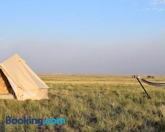 Starlight Tent - Holbrook - Outdoors view