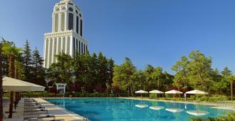 Sheraton Batumi Hotel - Batumi - Piscina