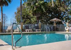 Comfort Suites Clearwater - Dunedin - Clearwater - Πισίνα