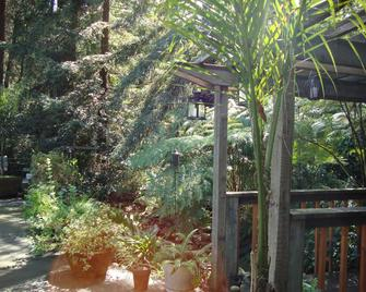 Daisy's Guest House - Sebastopol - Outdoors view