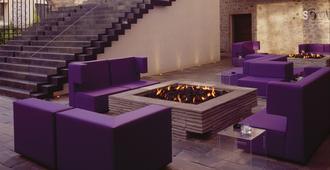 拉普雷菲卡多拉酒店 - 布埃布拉 - 普埃布拉 - 休閒室