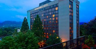 Renaissance Asheville Hotel - Asheville - Edificio