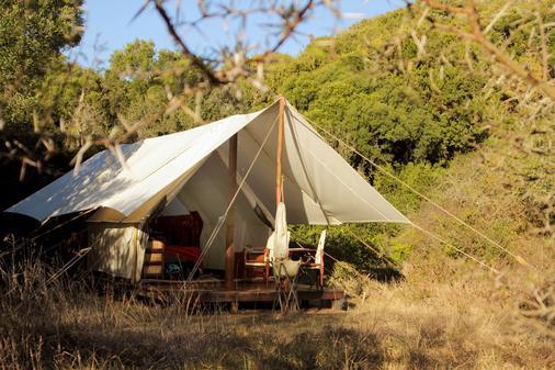 Quatermain's 1920's Safari Camp-Amakhala Game Reserve - Paterson - Patio
