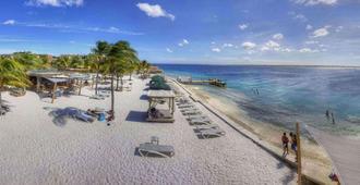 Eden Beach Resort - Kralendijk - Beach