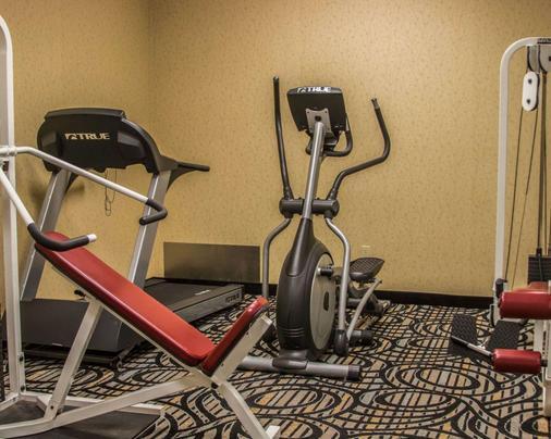 Comfort Inn - Birch Run - Gym