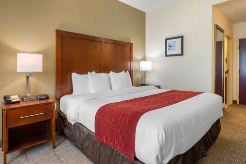 Comfort Inn & Suites Northeast - Gateway - Saint Petersburg - Phòng ngủ