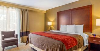 Comfort Inn Denver Central - Denver - Bedroom