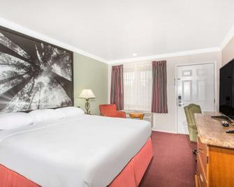 Super 8 by Wyndham Upper Lake - Upper Lake - Bedroom
