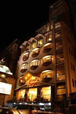 蘇里亞酒店 - 西姆拉 - 西姆拉 - 建築
