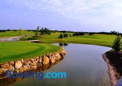 Sand Martin - Mladá Boleslav - Golf course