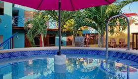 The Ritz Village Hotel - Adults Only - Willemstad - Uima-allas