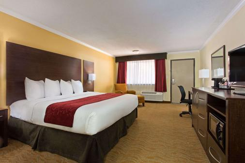 Ramada by Wyndham Tampa Airport Westshore - Τάμπα - Κρεβατοκάμαρα
