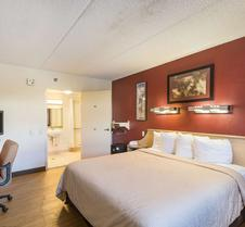 Rodeway Inn Tampa Near Busch Gardens-Usf