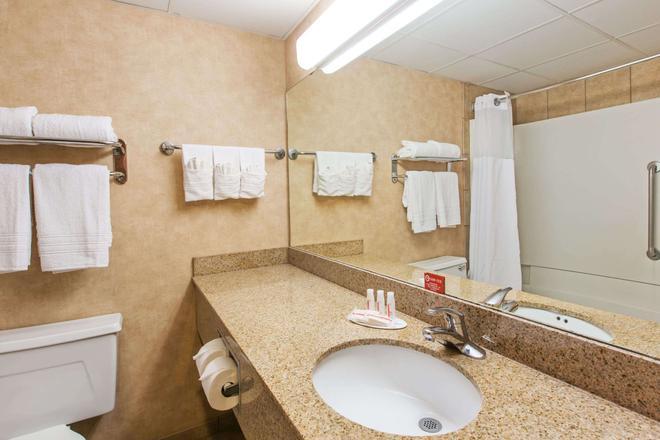 Ramada by Wyndham Sioux Falls Airport Hotel & Suites - Sioux Falls - Bathroom
