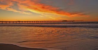 聖地牙哥海洋世界 - 海灘區智選假日酒店 - 聖地牙哥 - 聖地亞哥 - 室外景