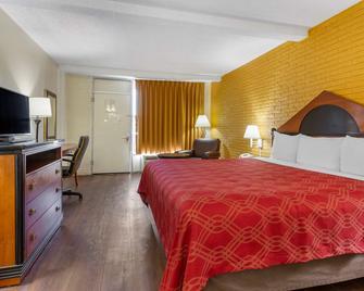 Econo Lodge Summerville - Summerville - Bedroom