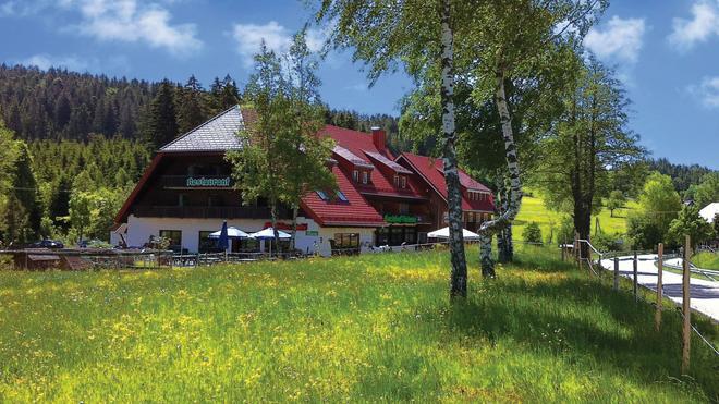 Hotel & Restaurant Mühlencafé - Breitnau - Edificio