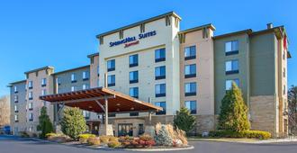 SpringHill Suites by Marriott Pigeon Forge - Pigeon Forge - Building