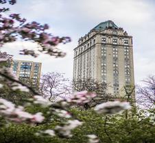 紐約皮埃爾泰姬陵酒店 - 紐約