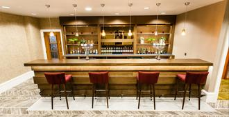 里茲皇冠假日酒店 - 里茲 - 利玆 - 酒吧