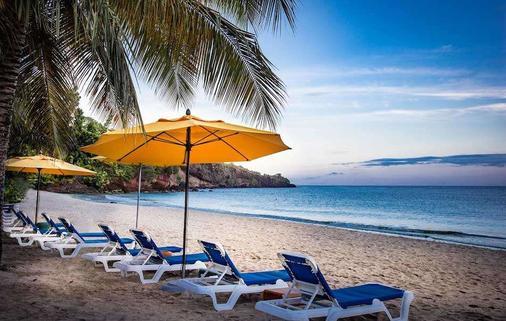 肉桂山格瑞那達酒店 - 聖喬治 - St. George's - 海灘