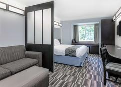 Microtel Inn & Suites by Wyndham Hoover/Birmingham - Hoover - Bedroom