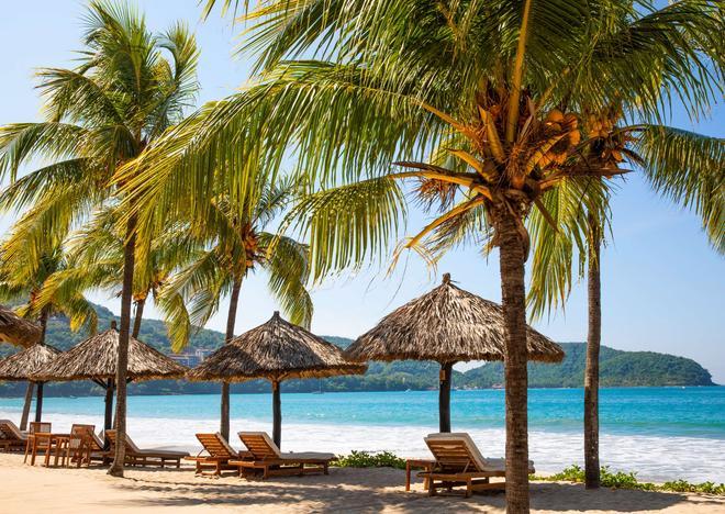Thompson Zihuatanejo, a Beach Resort - Zihuatanejo - Bãi biển