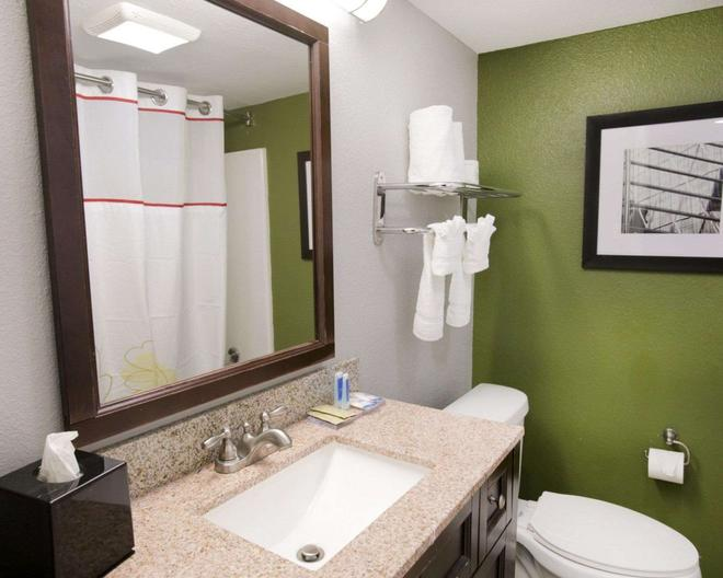 Rodeway Inn & Suites Downtown North - Austin - Bathroom