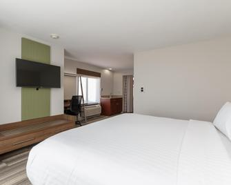Holiday Inn Express & Suites South Bend - Notre Dame Univ. - South Bend - Bedroom