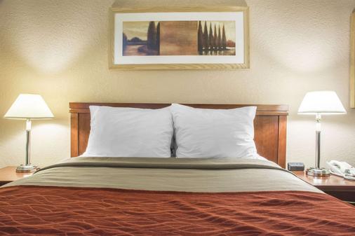 Comfort Inn - London - Bedroom