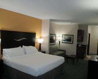 Holiday Inn Express Hotel And Suites Fort Stockton - Fort Stockton - Slaapkamer