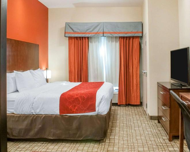 Comfort Suites Roswell - Roswell - Makuuhuone