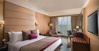 節毗斯哈斯酒店 - 新德里 - 新德里 - 臥室