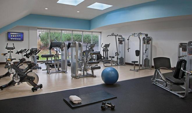 Toronto Don Valley Hotel and Suites - Toronto - Gym