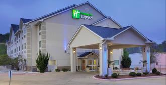 Holiday Inn Express Hotel & Suites - El Dorado