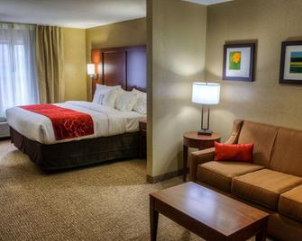 Comfort Suites Plymouth near US-30 - Plymouth - Slaapkamer