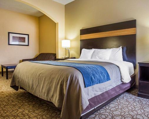 Comfort Inn & Suites at Stone Mountain - Stone Mountain - Bedroom