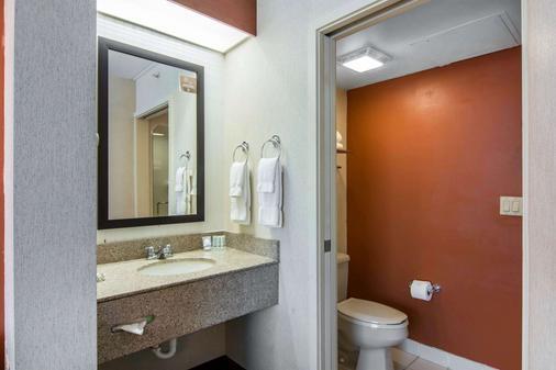 Sleep Inn Lake Wright - Norfolk Airport - Norfolk - Bathroom