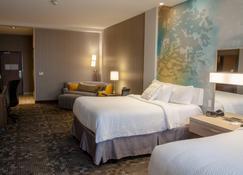 奧哈馬東康瑟爾崖萬怡飯店 - 康瑟爾布拉夫斯 - 臥室