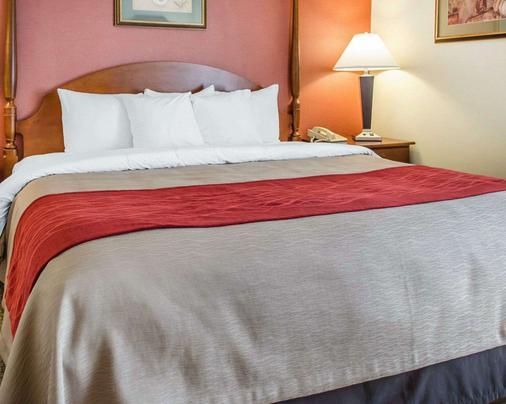 Comfort Inn & Suites - York - Phòng ngủ