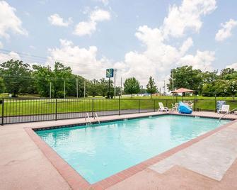 Quality Inn Savannah South - Savannah - Pool