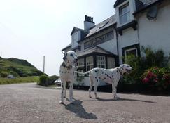 Argyll Hotel - Campbeltown