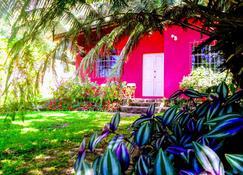Pink house - San Lucas Tolimán - Vista del exterior