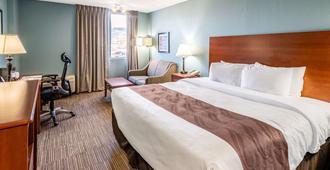 Quality Inn & Suites Garden Of The Gods - קולרדו ספרינגס - חדר שינה