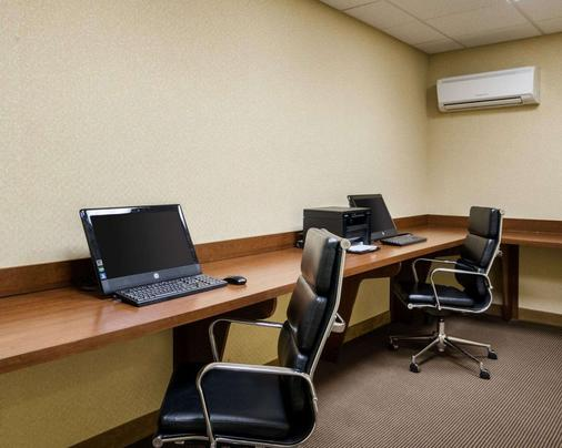 Comfort Inn & Suites - Dover - Business Center