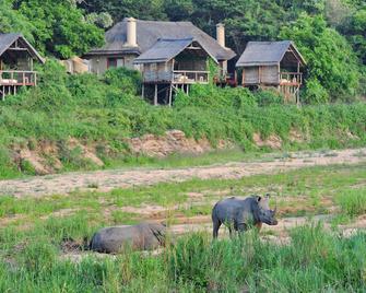 Jock Safari Lodge - Malelane - Outdoors view